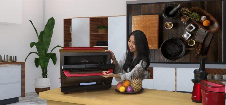 Healsio Superheated Steam Oven